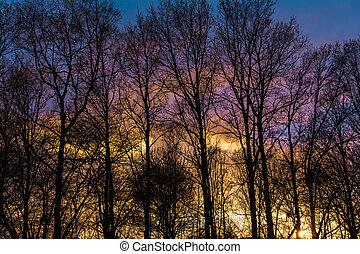 avond, hemel, kleurrijke