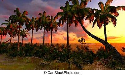 Awesome sunset on Hawaii - tropical paradise.