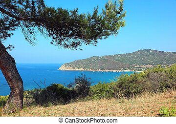 awesome view of mediterranea sea and the bay in summer ...
