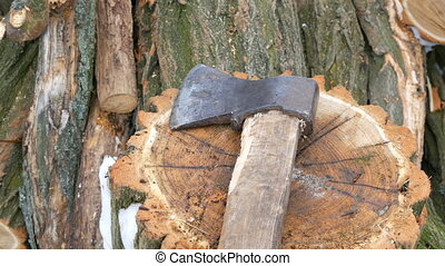 Ax lying on tree stump on a background of sawn trunks....