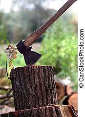 Axe in oak stump