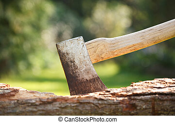 Axe in wood - Closeup of a single bit axe with hickory...