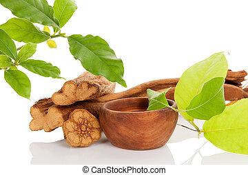 Ayahuasca medicine. Banisteriopsis caapi wood, psychotria...