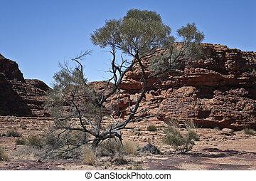 ayers, uluru, austrália, rocha
