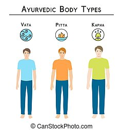 Ayurvedic body types. - Ayurveda vector illustration....