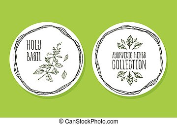 Ayurvedic Herb - Product Label with Holy Basil - Ayurvedic...