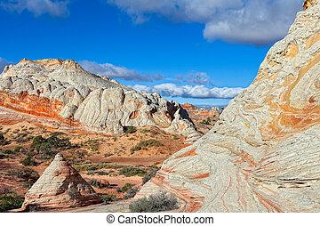 AZ-Paria Plateau-White Pocket