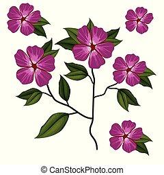 azalea flower plant in white background vector illustration