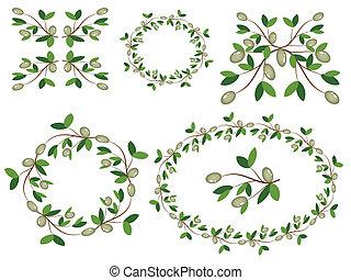azeitona, ramos, decor.