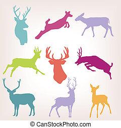 azione, cervo, set, silhouette