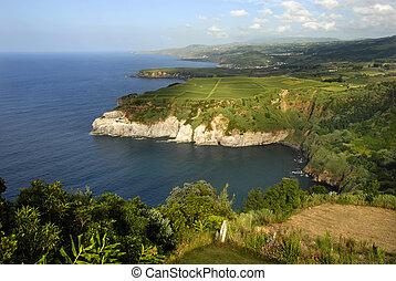 azores coastal cliff at sao miguel island