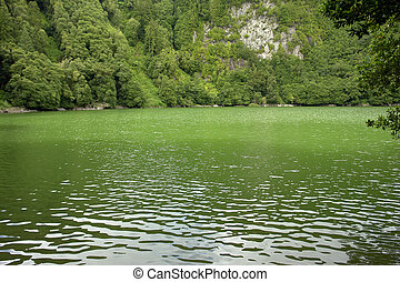 lake - azores green lake at s miguel island...