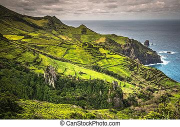azores, landskab, flores., portugal, ø