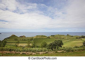 Azores rural coastline green landscape in Flores island. Portugal