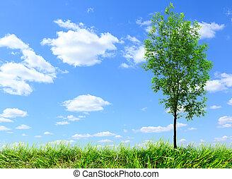 azul, árbol, ceniza, cielo, verde