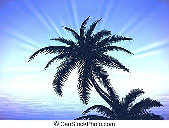 azul, árvore palma, amanhecer, fundo
