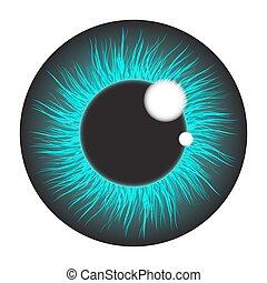 azul, íris, jogo, olho, isolado, realístico, vetorial, desenho, fundo, branca