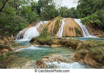 azul, 滝, メキシコ\, agua