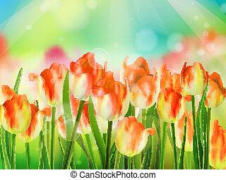 azul, 10, jardim, sky., tulips, eps, capim