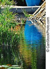azul, aguas, 1