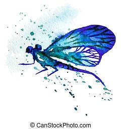 azul, aquarela, libélula