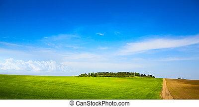 azul, arte, fazenda, sobre, campo céu, verde