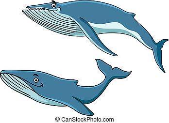 azul, ballenas, el nadar bajo el agua