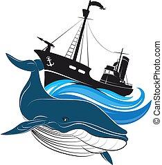 azul, ballenero, ballena