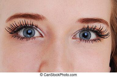 azul, bonito, eyes.