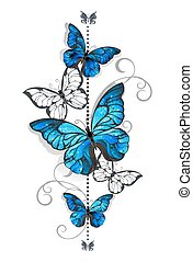 azul, borboleta, branca, morpho