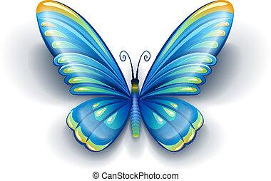 azul, borboleta, com, cor, asas