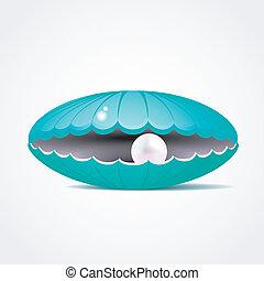 azul, cáscara, dentro, ilustración, perla, vector
