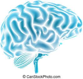 azul, cérebro, glowing, conceito