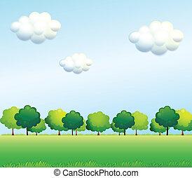 azul, céu claro, árvores, abaixo, verde