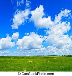 azul, campo, céu, verde