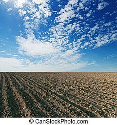 azul, campo, cultivado, céu, pretas