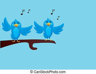 azul, cantando, pássaros, ramo
