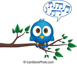 azul, canto, ramita, pájaro, sentado