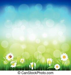 azul, capim, céu, vetorial, verde, flores