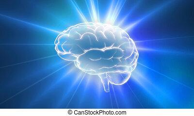 azul, cerebro, contorno, destellos