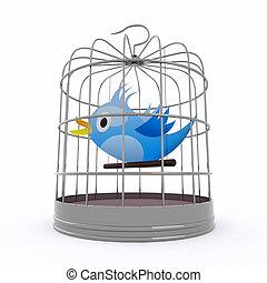 azul, chirps, dentro, engaiole pássaro
