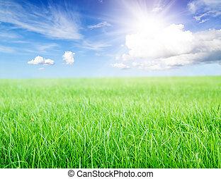 azul, cielo, sol, campo, verde, debajo, pasto o césped, mediodía