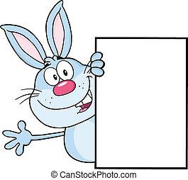 azul, coelho, ao redor, um, sinal branco