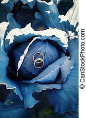 azul, col, anillos