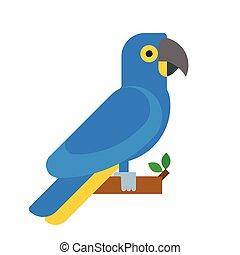 azul, coloridos, papagaio, natureza, animal estimação, raça, parakeets, ilustração, pássaro, tropicais, vetorial, animal, educação, espécie