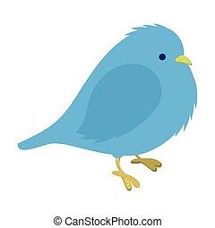azul, congelación, pájaro, ilustración