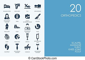 azul, conjunto, iconos, biblioteca, ortopedia, hámster