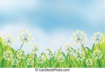 azul, crecer, debajo, cielo, malas hierbas