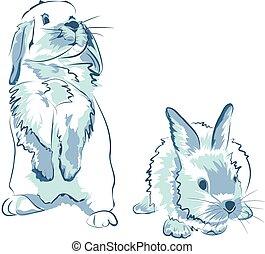 azul, divertido, conejos