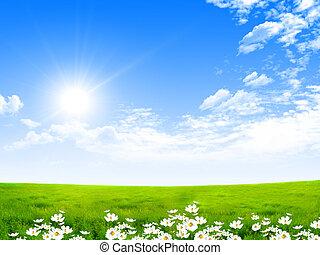 azul, exquisito, paisaje, cielos